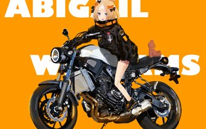 Picture bear, motorcycle, girl, Fate / Grand Order, The destiny of a great campaign