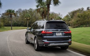 Picture trees, BMW, back, 2018, crossover, SUV, 2019, BMW X7, X7, G07