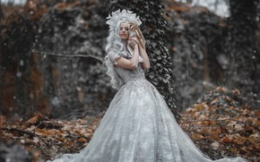 Picture autumn, forest, girl, nature, style, owl, bird, crown, dress, fantasy, blonde, Princess, curls, the barn …