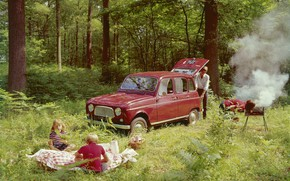 Picture forest, picnic, 1961-1967, Renault 4 L