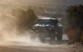 Picture dust, pickup, Rezvani, 2020, Hercules 6x6