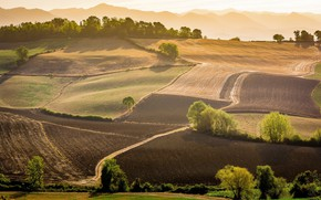 Picture field, landscape, nature, field, beauty, space, panorama