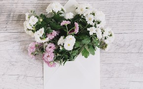 Picture bouquet, pink, white, white, Beautiful, wood, pink, flowers, asters, Leaves, aster