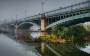 Picture bridge, fog, reflection, river, morning, lights, haze, arch, the bushes, pond