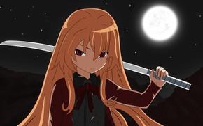 Picture look, girl, sword, Toradora!