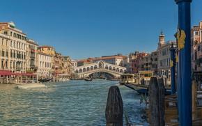 Picture home, Italy, Venice, channel, The Rialto Bridge