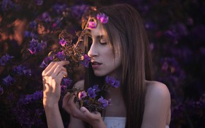 Picture girl, flowers, nature