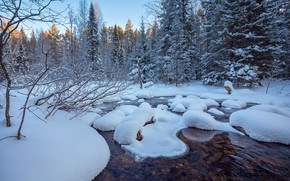 Picture winter, forest, snow, trees, river, Evdokimov Sergey