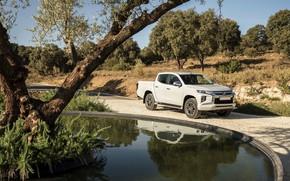 Picture pond, Mitsubishi, pickup, Double Cab, L200, Triton, 2019