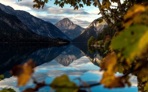 Picture landscape, mountains, branches, nature, lake, reflection, tree, Austria, Alps, forest, Bank
