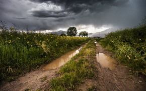 Picture road, the storm, field, summer, grass, flowers, mountains, clouds, after the rain, puddles, storm
