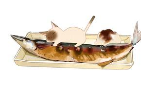 Picture white background, lies, dish, garnish, Siamese cat, kicks, fish baked
