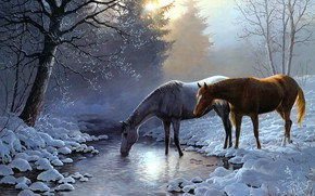 Picture winter, forest, light, snow, branches, nature, fog, tree, figure, two, horses, picture, morning, ate, horse, …