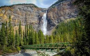 Wallpaper mountains, waterfall, tree