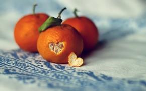 Picture leaf, heart, peel, tangerines