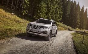Picture vegetation, Renault, pickup, 4x4, primer, 2017, Alaskan, gray-silver