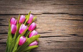 Picture flowers, tulips, pink, wood, pink, flowers, beautiful, tulips, spring