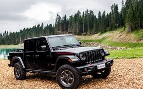 Picture black, SUV, pickup, Gladiator, 4x4, Jeep, Rubicon, the pond, 2019