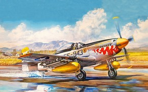 Picture USAF, P-51D Mustang, Piston fighter, F-51D Mustang