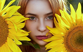 Picture girl, sunflowers, Aliona Turcan, Vyacheslav Turcan