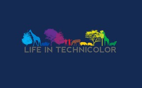 Picture the film, silhouette, life in technicolor, life in colors