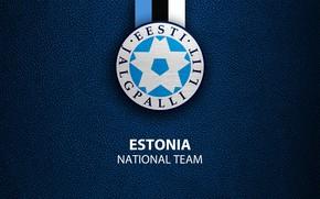 Picture wallpaper, sport, logo, football, Estonia, National team