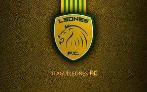 Picture wallpaper, sport, logo, football, Lions
