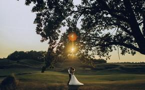 Picture girl, the sun, hugs, pair, male, lovers, the bride, Anastasia Shcheglova