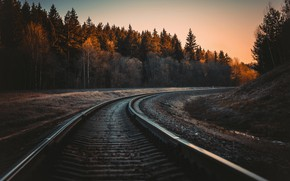 Picture Sunset, Nature, Sunrise, Forest, Plant, Dawn, Railroad, Plants, The way, Rails, Sleepers, Nature, Sunset, Sunrise, …
