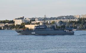 Picture Sevastopol, minesweeper, project 12700, Ivan Antonov, author Erne