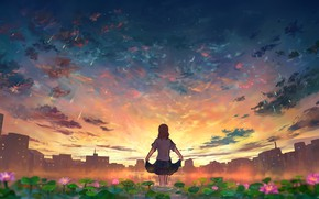 Picture girl, sunset, flowers, the city, pond, Starfall
