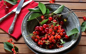 Picture leaves, cherry, berries, knife, bowl, currants