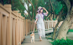 Picture greens, summer, look, girl, trees, pose, style, Park, background, mood, trunks, street, the fence, dog, …