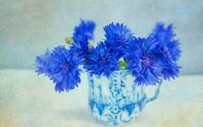 Picture background, texture, mug, cornflowers