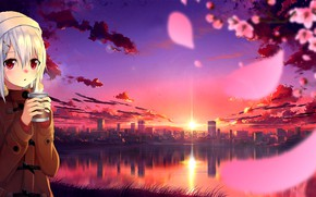 Picture the sky, girl, landscape, sunset, the city, reflection, coffee, petals, Sakura, Chan, розовая ночь, вечерний …