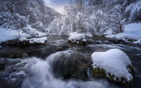 Picture winter, frost, forest, water, snow, trees, branches, river, stones, shore, for, waterfall, stream, river, snowy