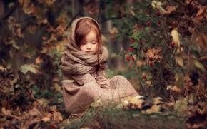 Wallpaper autumn, forest, leaves, nature, berries, Bush, dress, fruit, briar, girl, child, Darya Stepanova, Snood