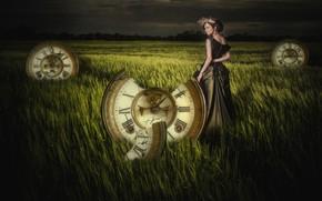 Picture field, grass, girl, watch, photoart