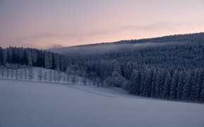 Picture winter, forest, snow, trees, Germany, ate, Germany, Saxony, Saxony, Ore Mountains, The ore mountains