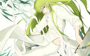 Picture look, smoke, tube, green hair, Enkidu, Fate strange fake