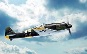 Picture Fw.190A-4, Radial engine BMW 801D, Focke-Wulf FW 190 Würger, I./JG54, Jagdgeschwader 54 Green Heart