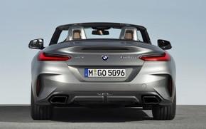 Picture grey, BMW, Roadster, feed, BMW Z4, M40i, Z4, 2019, G29