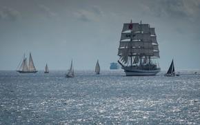Picture ships, yachts, horizon, sailboats