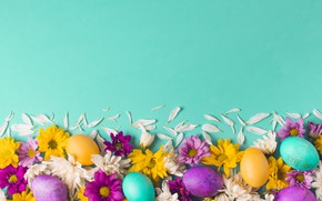 Picture flowers, background, holiday, spring, petals, Easter, buds, composition