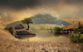 Wallpaper grass, trees, landscape, birds, nature, pond, the reeds, graphics, mountain, house, digital art, herons