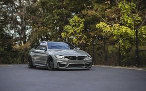 Picture BMW, Sight, Graphite, LED, F83, M4