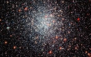 Picture Globular cluster, Part of the Large Magellanic Cloud, NGC 1783, Dorado constellation