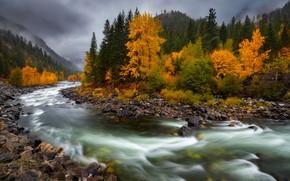 Picture autumn, river, stones, for, Doug Shearer