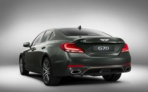 Picture sedan, Hyundai, rear view, Genesis, 2019, G70