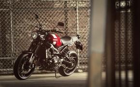 Picture motorcycle, red, is, Yamaha, moto, Yamaha XSR900, city bike